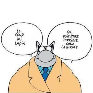 C est pour rire page 3 - Coup du lapin indemnisation assurance ...